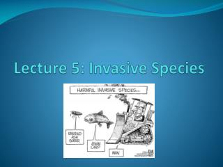 Lecture 5: Invasive Species