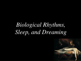 Biological Rhythms, Sleep, and Dreaming