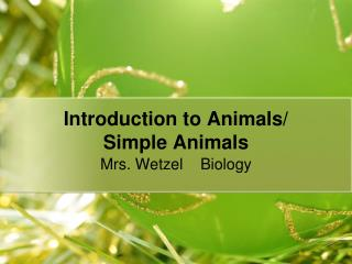 Introduction to Animals/  Simple Animals
