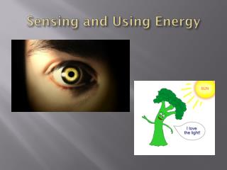 Sensing and Using Energy