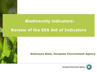 Biodiversity indicators:  Review of the EEA Set of Indicators