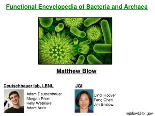 Functional Encyclopedia of Bacteria and  Archaea