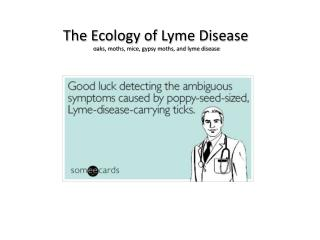 The Ecology of Lyme Disease o aks, moths, mice, gypsy moths, and lyme disease