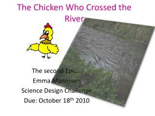 The Chicken Who Crossed the River