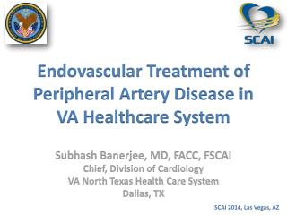 Endovascular Treatment of Peripheral Artery Disease in VA Healthcare System