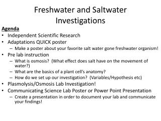 Freshwater and Saltwater Investigations