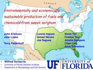 Environmentally and economically sustainable production of fuels and chemicals from sweet sorghum