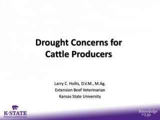 Drought Concerns for  Cattle Producers