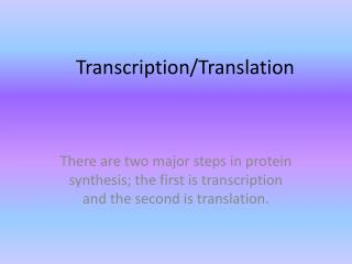 Transcription/Translation