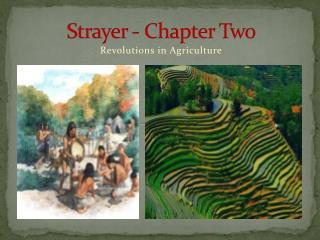 Strayer - Chapter Two