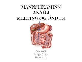 MANNSLÍKAMINN 2.KAFLI MELTING OG ÖNDUN