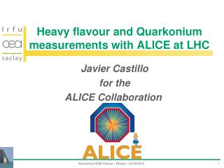 Heavy flavour and  Quarkonium  measurements with ALICE at LHC