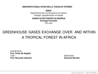 greenhouse  gases exchange over  and within a tropical forest in  africa
