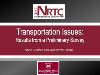 Transportation Issues: Results from a Preliminary Survey