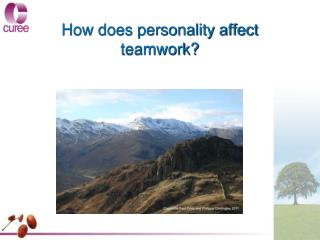 How does personality affect teamwork?
