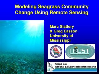 Modeling Seagrass Community Change Using Remote Sensing