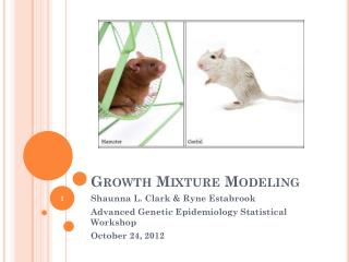 Growth Mixture Modeling