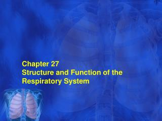 Chapter  27 Structure and Function of the Respiratory System