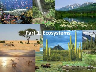Part 1. Ecosystems