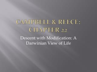 Campbell &  reece : Chapter 22