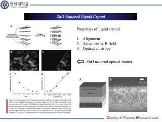 ZnO Nanorod  Liquid Crystal