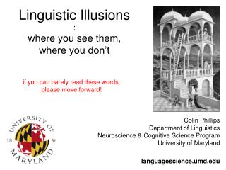 Linguistic Illusions : where you see them,  where you don't