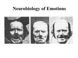 Neurobiology of Emotions