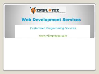 Web Development Solutions