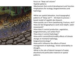 "Focus  on ""deep soil column"" S patial patterns M echanism that control development and function"