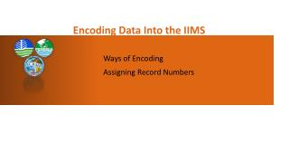 Encoding Data Into the IIMS