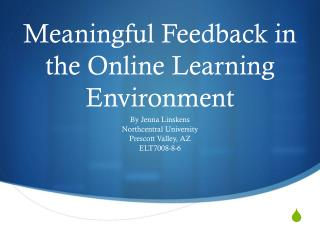 Meaningful Feedback in the Online Learning Environment