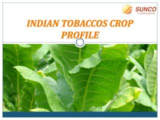 INDIAN TOBACCOS CROP PROFILE