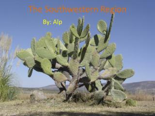The Southwestern Region