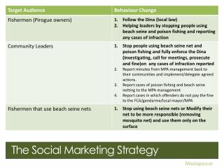 The  Social Marketing Strategy