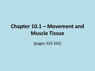 Chapter 10.1 – Movement and Muscle Tissue