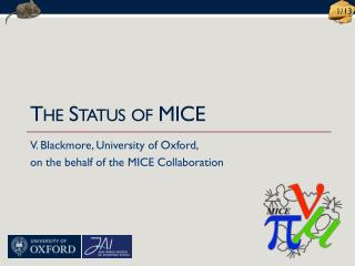 The Status of MICE