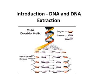 Introduction - DNA and DNA Extraction