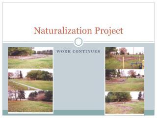 Naturalization Project