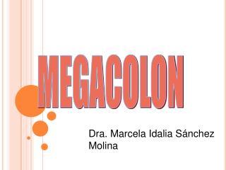 MEGACOLON