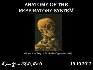 Vincent Van Gogh – Skull with Cigarette (1886)