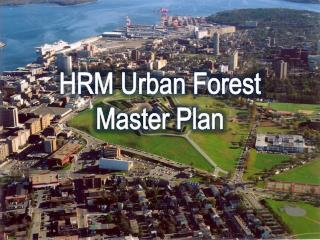 HRM Urban Forest Master Plan