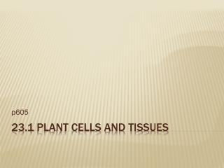 23.1 Plant Cells and Tissues