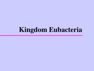 Kingdom Eubacteria