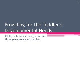Providing for the Toddler's Developmental Needs