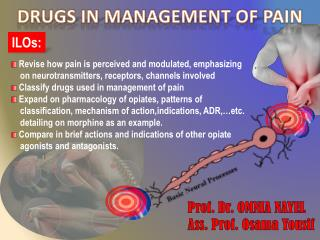 DRUGS IN MANAGEMENT OF  PAIN