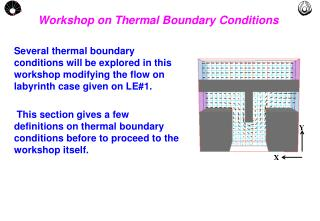 Workshop on Thermal Boundary Conditions