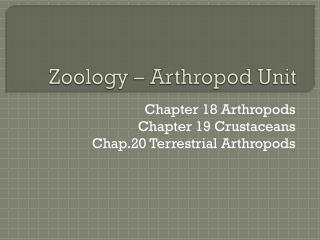 Zoology – Arthropod Unit