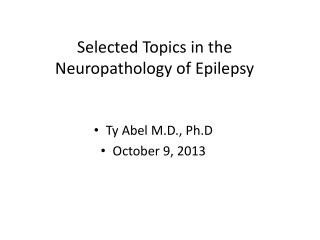 Selected Topics in the Neuropathology of Epilepsy