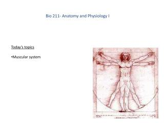 Bio 211- Anatomy and Physiology I
