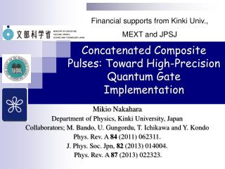 Concatenated Composite Pulses: Toward High-Precision Quantum Gate Implementation